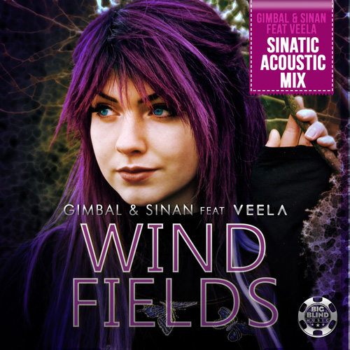 Gimbal & Sinan - Windfields - Sinatic Acoustic Mix