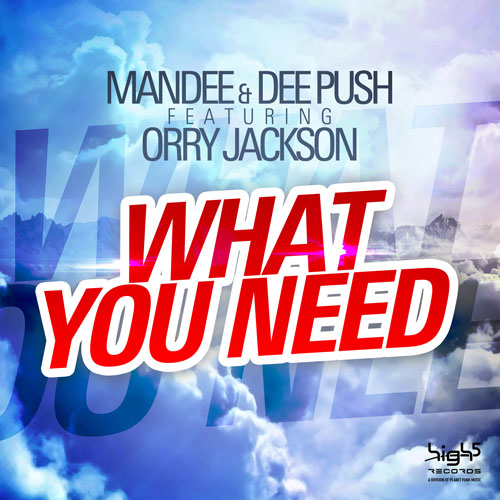 Mandee & Dee Push - What You Need
